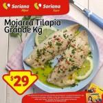 Mojarra Tilapia Soriana OFFDE