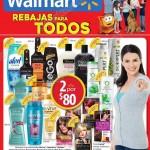 Folleto Walmart Mayo - Junio OFFDE