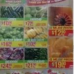 Ofertas en frutas y verduras en bodega aurrera OFFDE