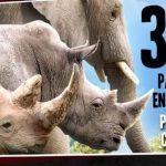 3x2-en-africam-safari-buen-fin-2016