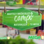 ofertas-frutas-y-verduras-comercial-mexocana-y-mega-10-y-11-de-enero-offde