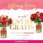 Envio gratis en envia flores 28 de marzo OFFDE