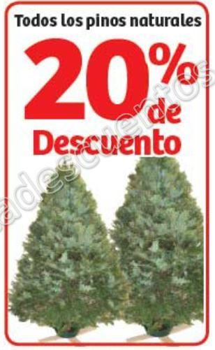 Soriana: 20% de Descuento en Todos los Pinos Naturales