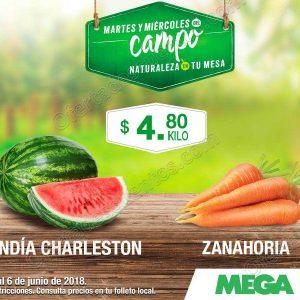 Ofertas Frutas y Verduras Mega Soriana 12 y 13 de Junio 2018