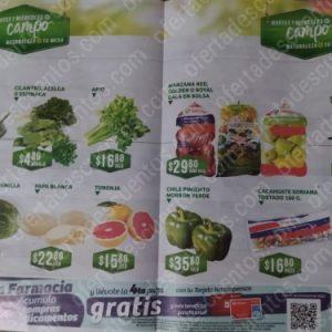 Soriana: Ofertas Frutas y Verduras Martes y Miércoles del Campo 24 y 25 de Marzo 2020