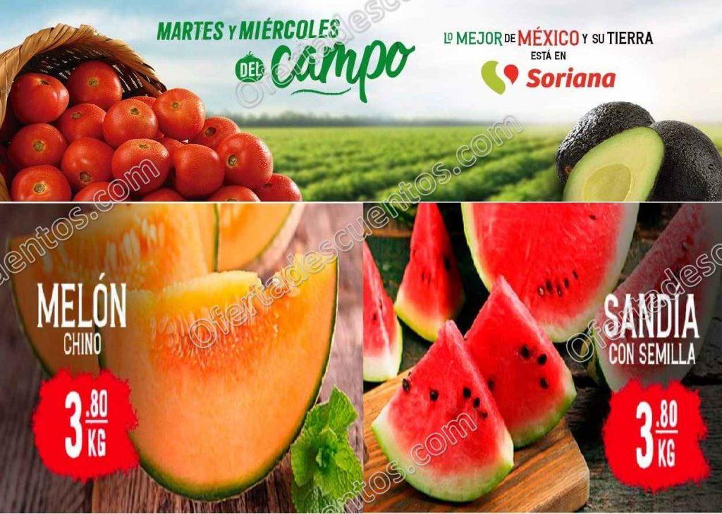 Soriana: Ofertas Frutas y Verduras 19 y 20 de Mayo 2020
