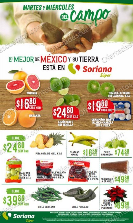 Soriana Super: Ofertas en Frutas y Verduras 3 y 4 de Noviembre 2020