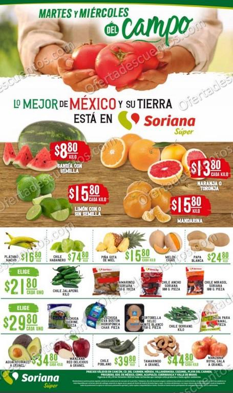 Soriana Super: Ofertas en Frutas y Verduras 8 y 9 de Diciembre 2020